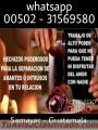 EXPERTO EN AMORES IMPOSIBLES 00502-31569580